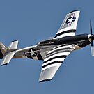 P51 Mustang by Mark Weaver