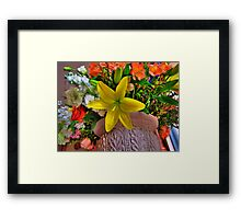 Boston in Blooms - Lillis  Framed Print