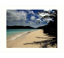 Caribbean View Art Print