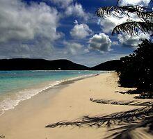 Caribbean View by antonio