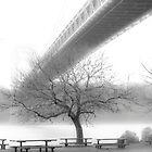 GW Bridge 2663 by Zohar Lindenbaum