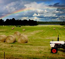 The Rainbow and the Tractor by Wayne King