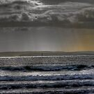 A View from West Wittering by Greg Roberts