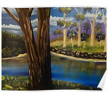 Summer in the Snowy River Region Poster