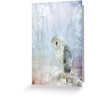 Ghost Owl Greeting Card