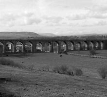 Whalley Viaduct by kiran mulholland