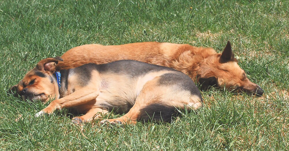 After the fun, we sleep in the sun by Selina Tour
