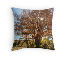 Cape Breton Autumn Throw Pillow