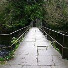 River Crossing by Honor Kyne