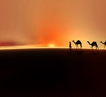 Desert mirage'... by Valerie Anne Kelly