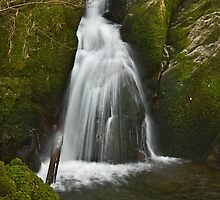 Stock Ghyll Force by Steve  Liptrot