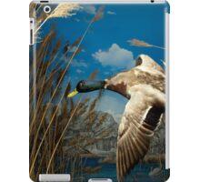 Natural environment diorama - a mallard  flying in the sky iPad Case/Skin