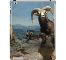 Natural environment diorama - steinbocks iPad Case/Skin