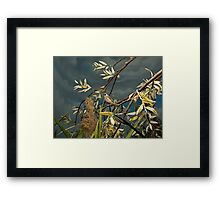 Natural environment diorama - A bird resting on a branch Framed Print