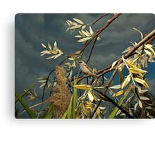 Natural environment diorama - A bird resting on a branch Canvas Print