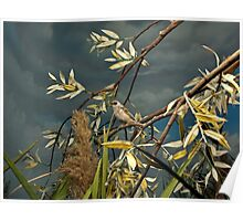 Natural environment diorama - A bird resting on a branch Poster