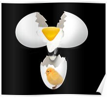 GIVE A CHICK A BREAK..EGG PICTURE,POSTERS,PRINTS ECT.. Poster