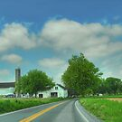 Pennsylvania Amish Farm by Dyle Warren