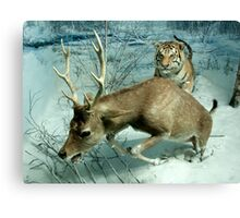 Natural environment diorama -  A deer escaping a tiger attack  Canvas Print