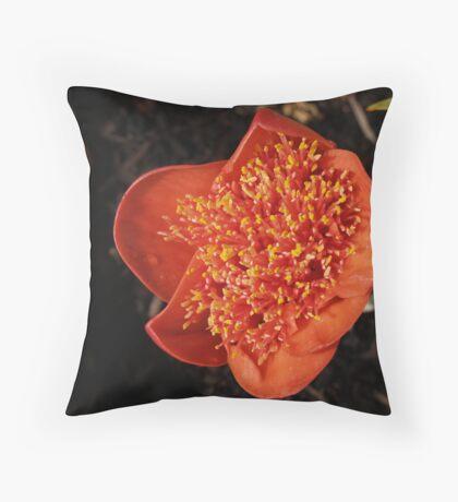 paintbrush flower Throw Pillow