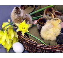 Easter Ambience Photographic Print