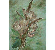 Magnolia Blooms Photographic Print