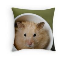 Rascal I Throw Pillow