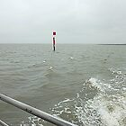 Channel Marker in Choppy Sea by EdsMum