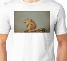 American red squirrel T-Shirt