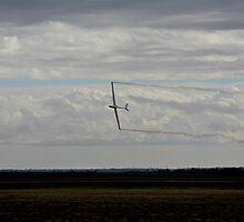 Avalon 2009 - jet powered glider by Col  Finnie