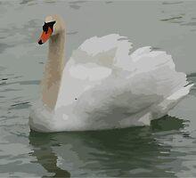 Elegant Swan by BorisBurakov