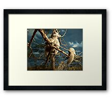 Natural environment diorama - Fox squirrel resting on a branch  Framed Print