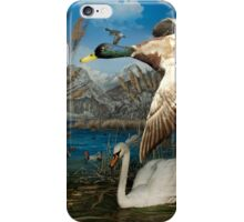 Natural environment diorama - a mallard and a swan in a pond  iPhone Case/Skin