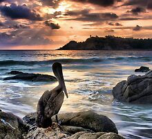 Sunset in Puerto Escondido by Barbara  Brown