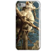 Natural environment diorama - Fox squirrel resting on a branch  iPhone Case/Skin