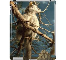 Natural environment diorama - Fox squirrel resting on a branch  iPad Case/Skin
