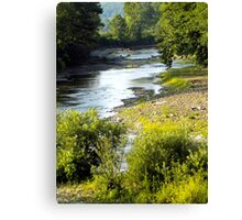 White River Spring Canvas Print