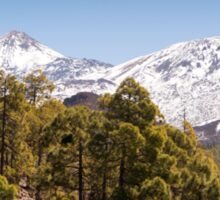 Looking Up to El Teide Sticker