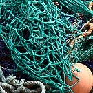 Fish Net  by FASImages