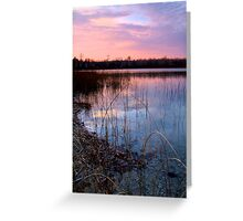 Dusk on Lake Harold II Greeting Card