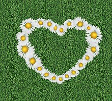 Daisy heart on grass by AnnArtshock