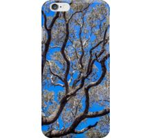 Beyond The Treetops To The Blue Sky iPhone Case/Skin