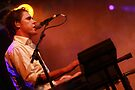 Tim Freedman / The Whitlams by david gilliver
