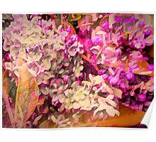 Lilacs Big Color Poster