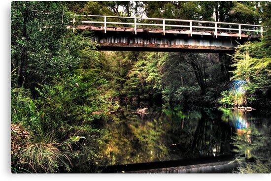 Warburton Bridge With Greg by Tony Lin