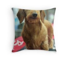 WIRE HAIRED DACHSUND Throw Pillow