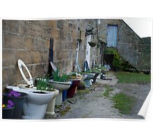 Loo With A View  -  Bums, Bogs, and Flowerpots! Poster