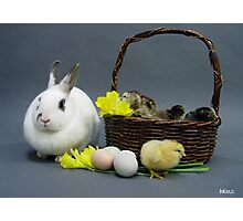 Easter basket 1 Photographic Print
