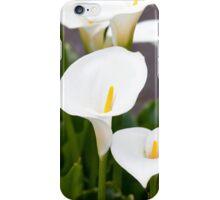 Calla Lily  iPhone Case/Skin