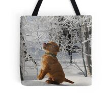 Tasting Frost Tote Bag